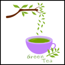Fresh green tea illustration with leaves vector